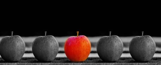 Kluge Mitarbeiterauswahl – gibt´s sowas?