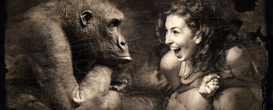 Emotionale Intelligenz – EQ – für Deinen Erfolg